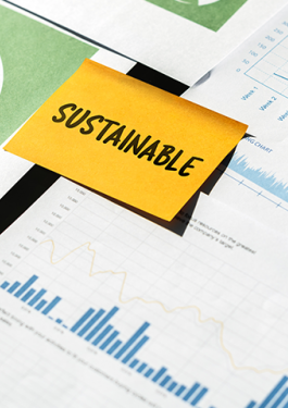 Sustainability Report Assurance